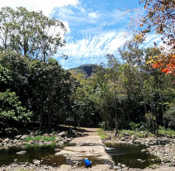 1st Black River Gorges National Park