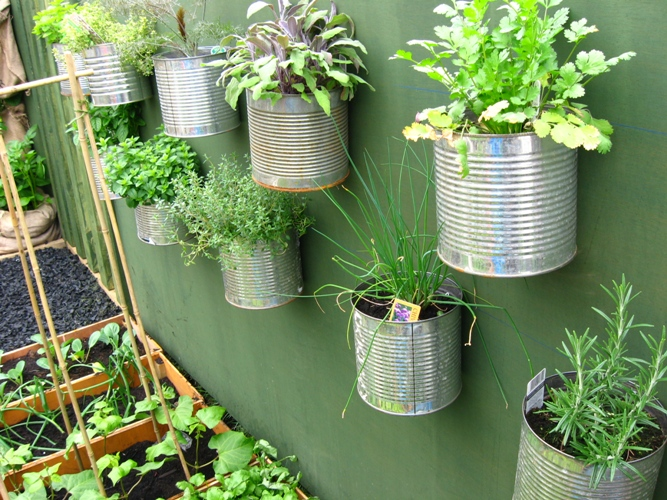 3rd guidance for growing your own garden