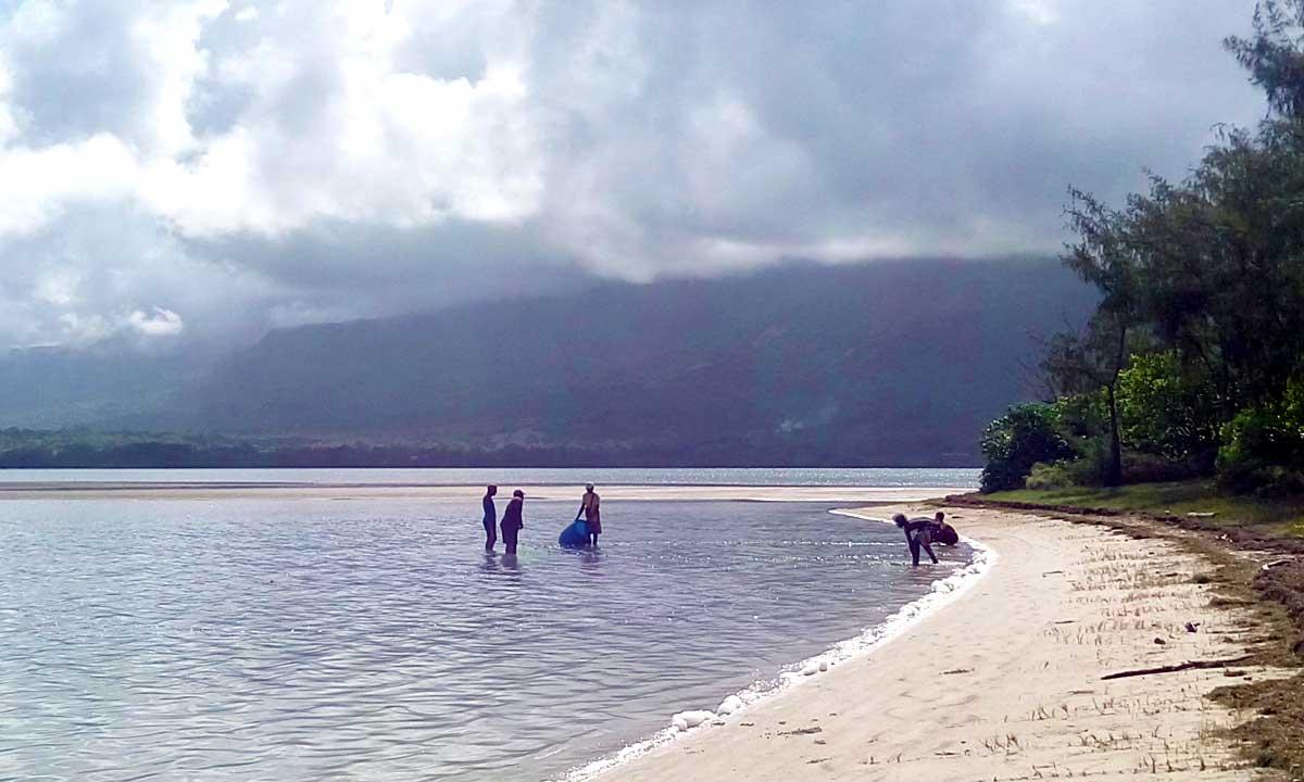 Ile aux Benitiers, west coast of Mauritius