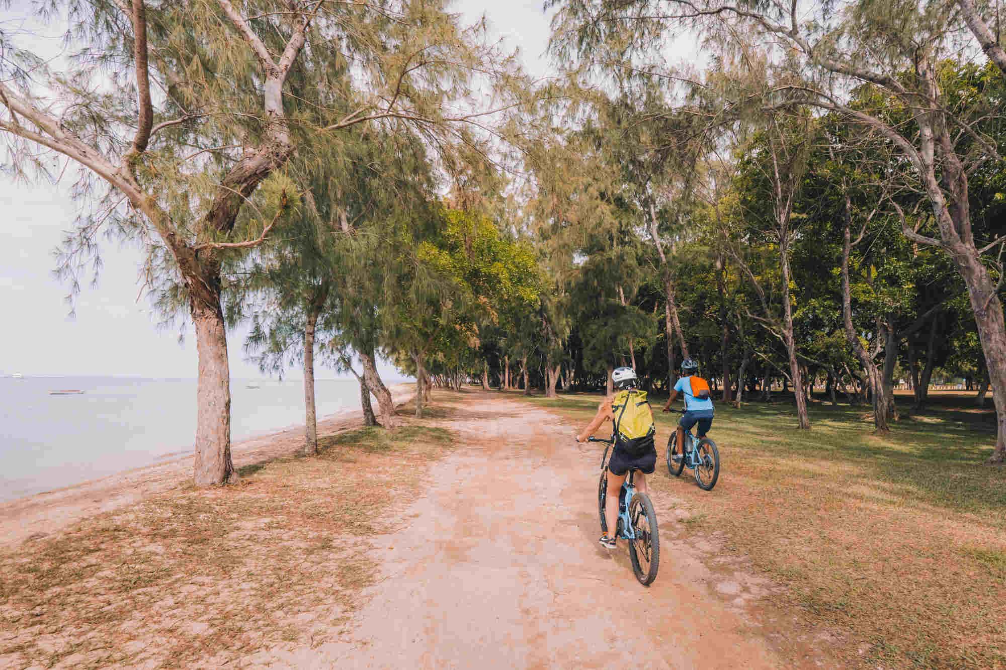 Bire rental Mauritius