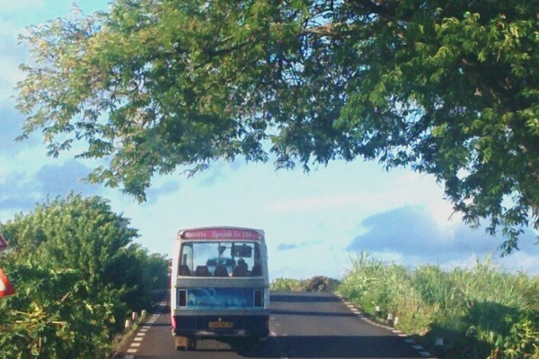 Mauritius buses