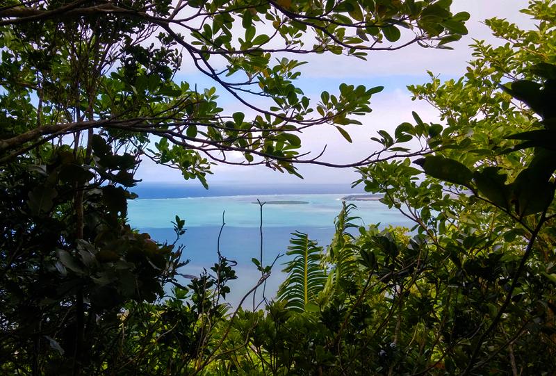 view_when_hiking_lion_mountain