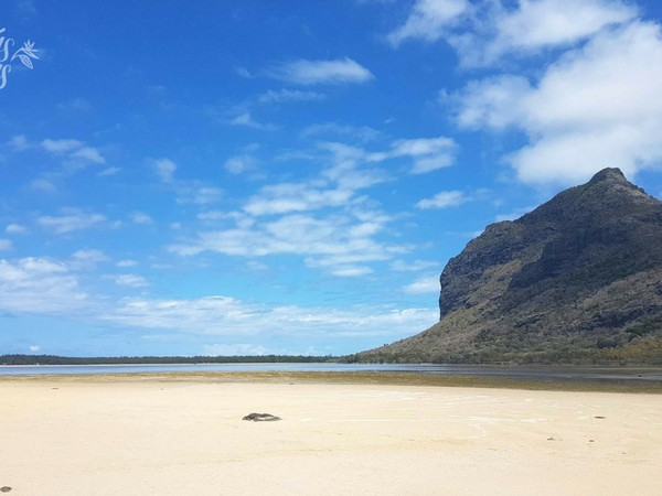 Enjoy a picnic on a deserted beach of Benitiers Island