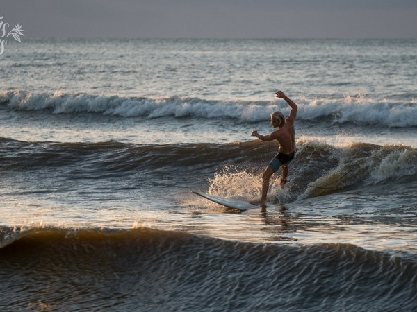 Learn to surf in Tamarin!