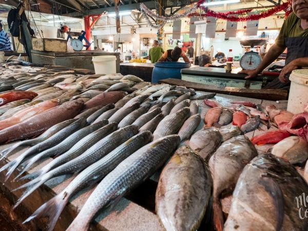 The catch of the day in Port Louis bazaar