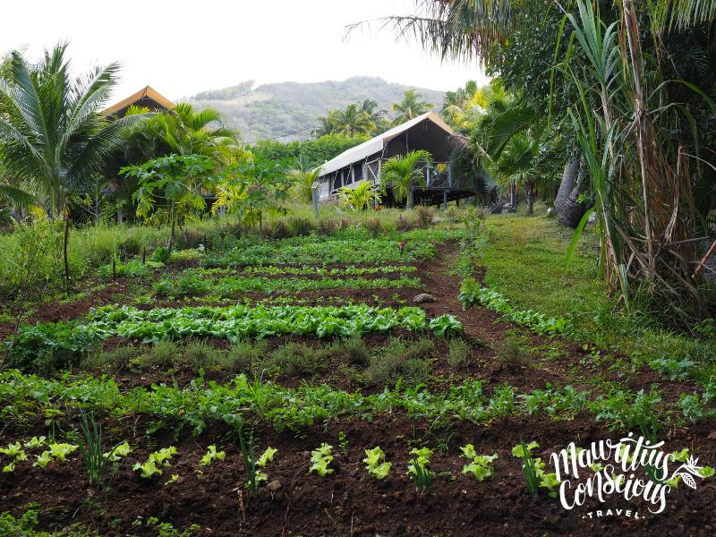 Eco-Lodges Mauritius