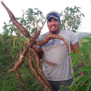 Permaculture Mauritius