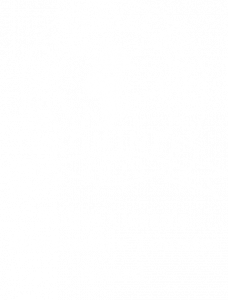 indian-oceans-responsible-tourism-award-2020-mauritius-conscious