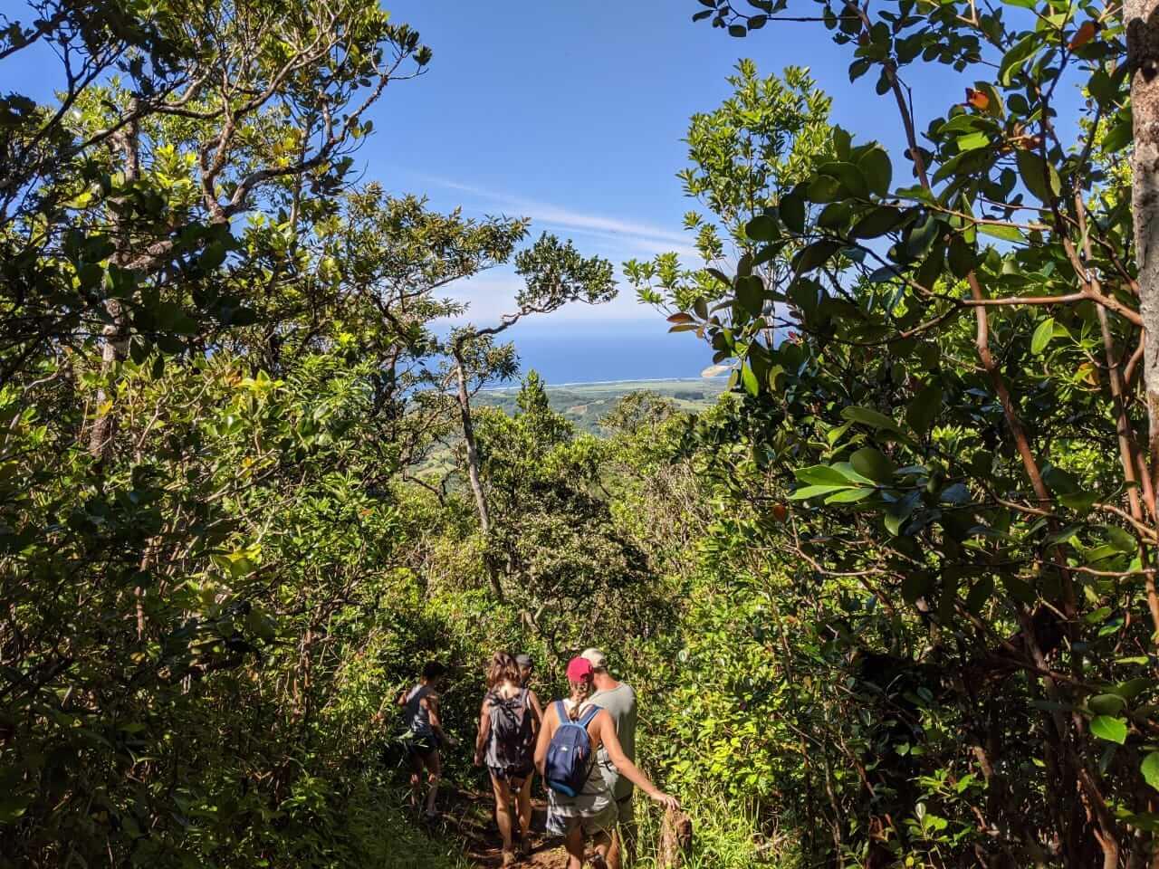 hiking_in_mauritius_1